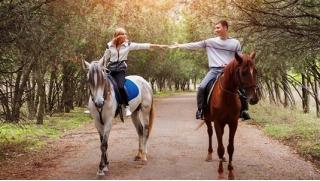 Конные прогулки! Конное шоу, прогулка в экипаже или конная прогулка с горячим обедом в конноспортивном клубе «Баллада»!