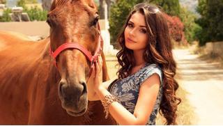 Купономания СПБ! Катание на лошадях для двоих со скидкой 51% от конного клуба «Авенсис» с инструктажем и экипировкой!