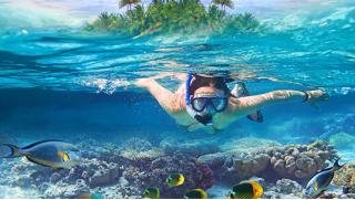 Покорись, стихия! Базовый курс дайвинга для одного или двоих по системе CMAS в Клубе «WTA Diving»! Скидка 46%!