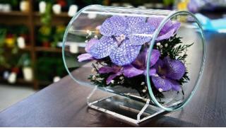 Цветы купон! Композиции и букеты стабилизированных неувядающих цветов от Компании Flowers Design! Скидка 30%!